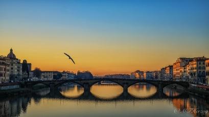 ponte-alla-carraia3