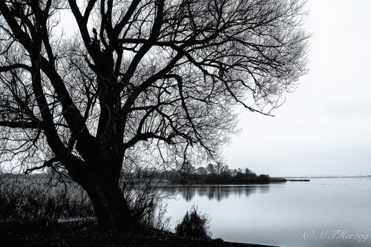 lake37