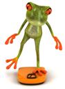 frogbalance0004_tns