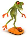 frogbalance0005_tns