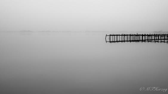 lake19