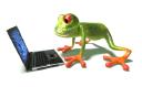 frog_laptop01_tns